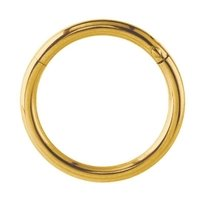Gold Plated Hinged Segment Ring