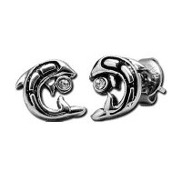 Stainless Steel Dolphin & CZ Earrings