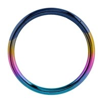 Surgical Steel Hinged Segment Ring - Rainbow
